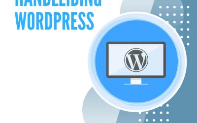 Sitevisie 10 jaar – cadeau september – handleiding WordPress